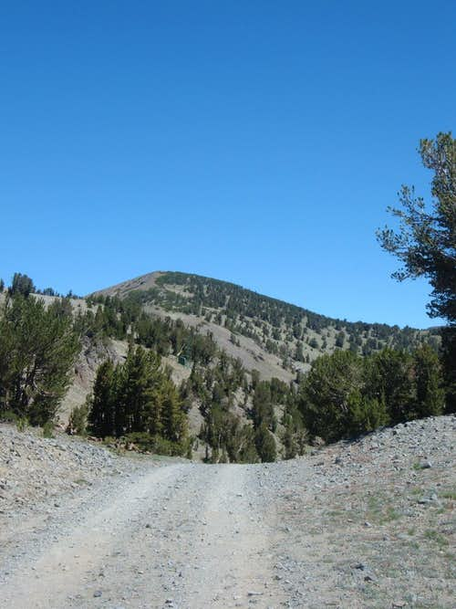 Mount Houghton from the Relay Peak Service Road