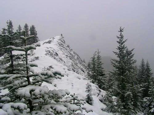 Summit ridge with much less...
