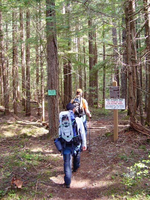 Hike through the Forest to Mount Outram