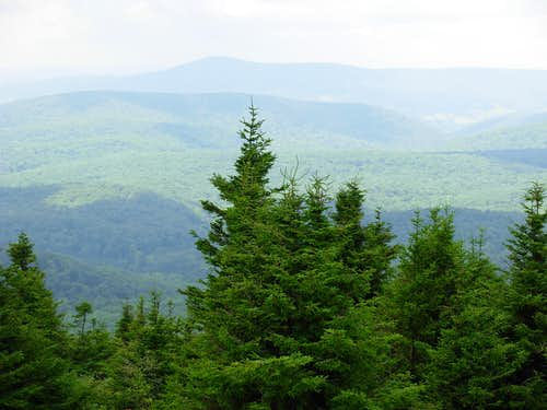 A View From Spruce Knob...