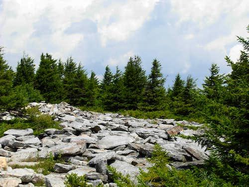 Rocky Landscape On Spruce Knob...