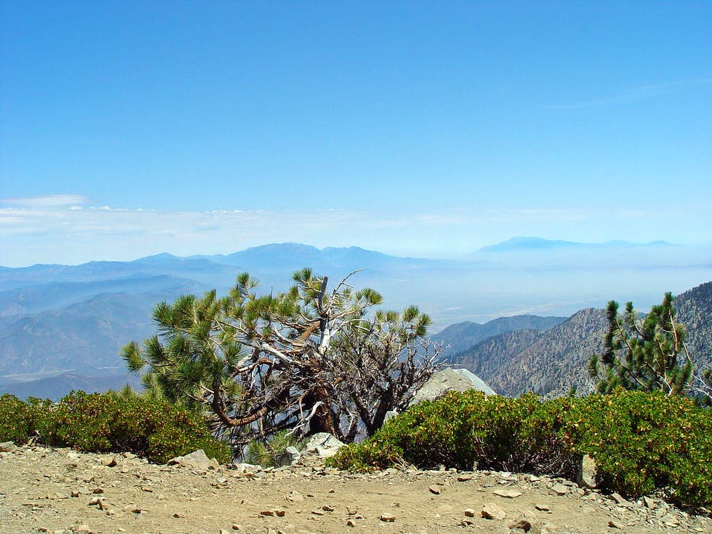 View from Summit of Telegraph Peak