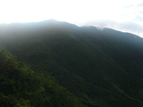 Blue Mountains, Jamaica