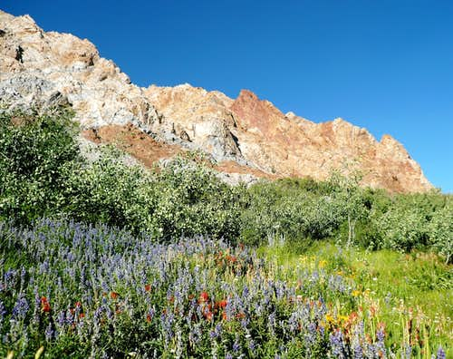 Crags and Colors