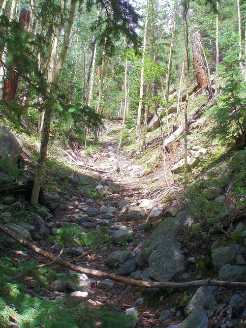 Dry Streambed in Grouse Gulch