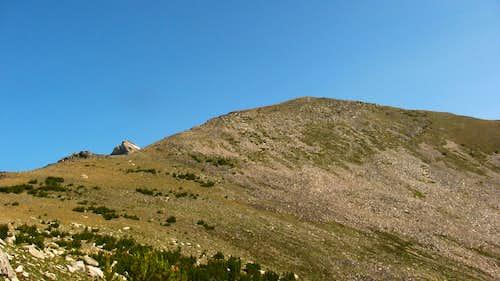 Static Peak