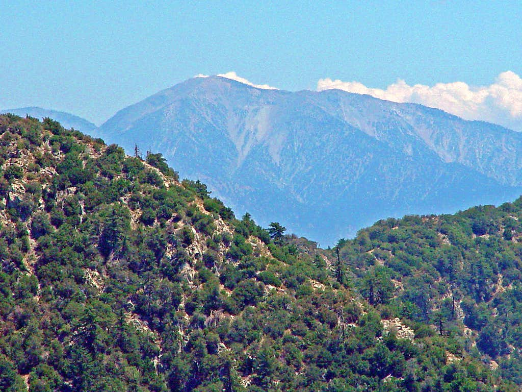 Mount Baldy from Mount Lowe