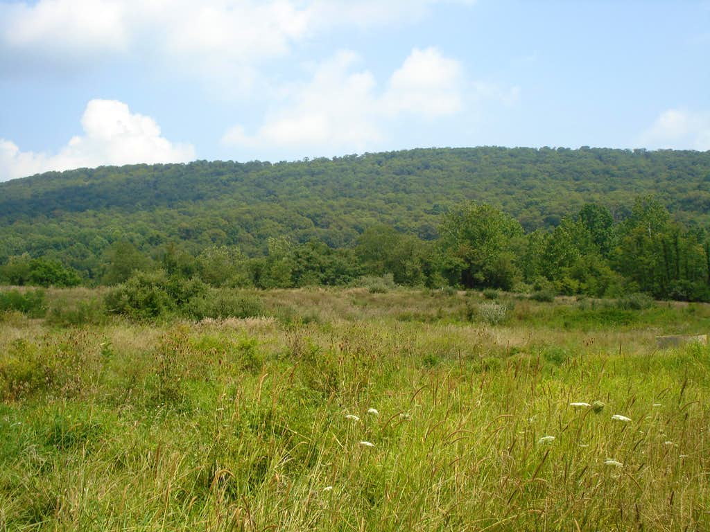 Rickard Mountain