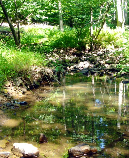 Polecat Hollow Stream
