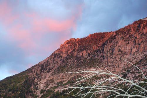 First Rays of Sun on Pine Mountain