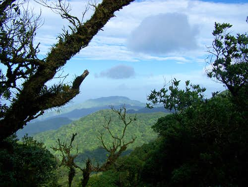 Cerro La Estrella