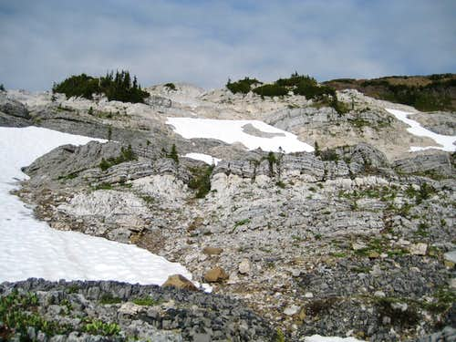 Head of Marblerock Creek