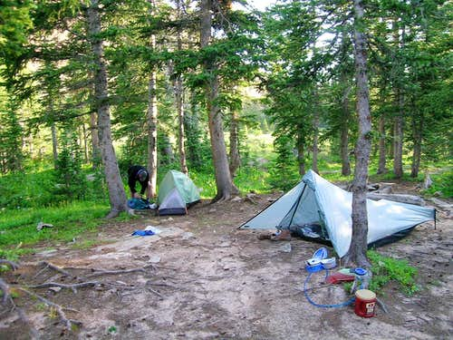 Navajo Lake Camp Site