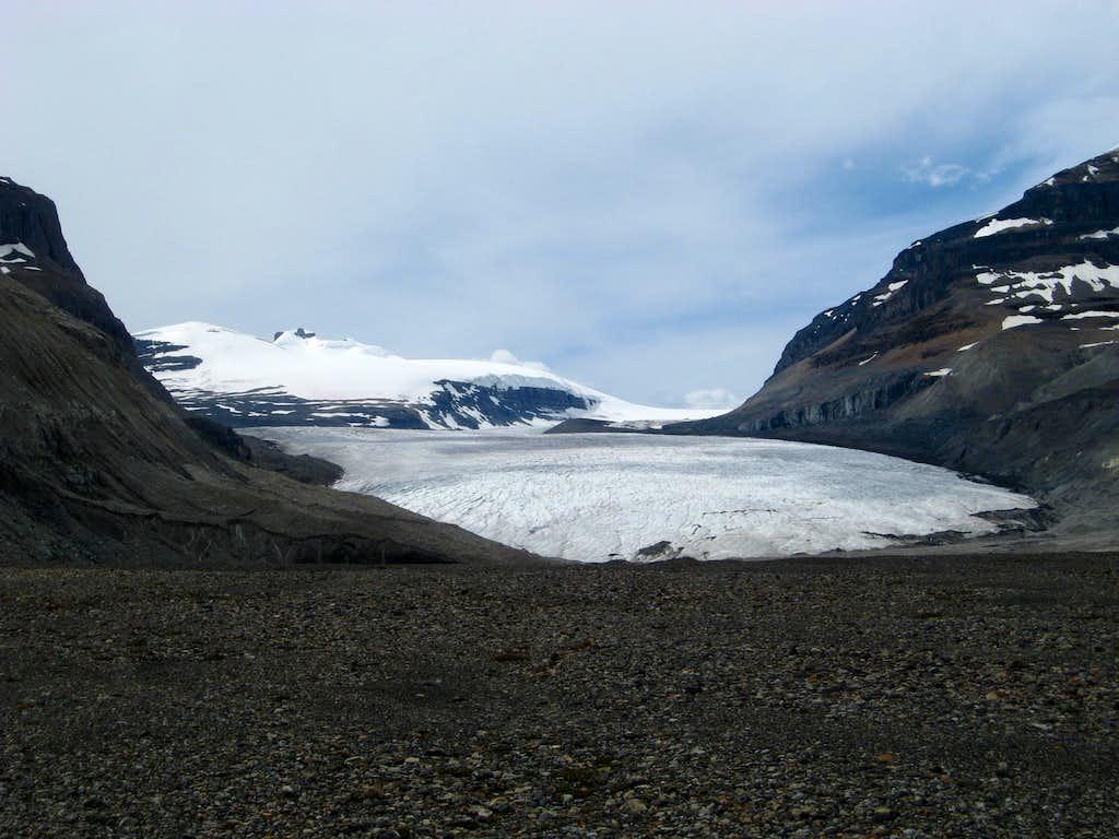 Lower saskatchewan glacier