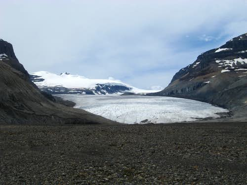 Lower saskatchewan glacier