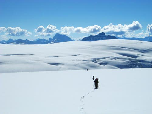 Endless slogging on the Columbia Icefield