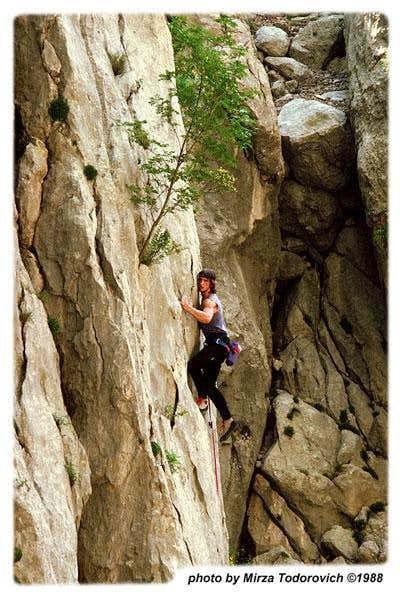 Climber in