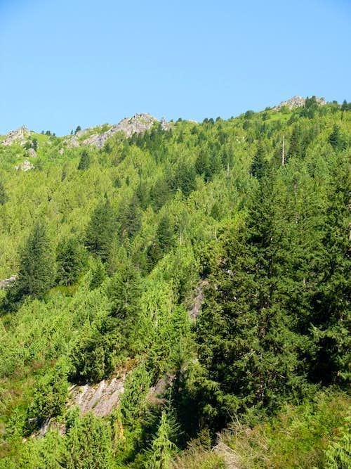 Bare Mountain