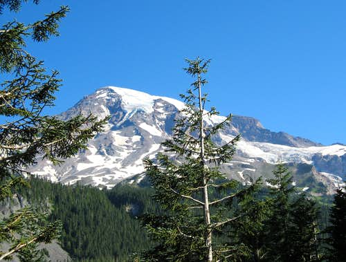 Mt. Rainier, despite it all....