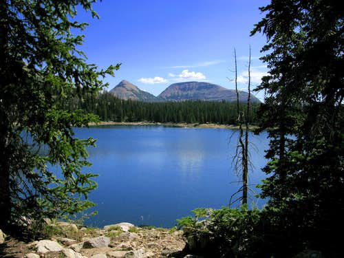 Reids Peak and Bald Mountain