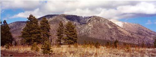 Mt. Elden from Buffalo Park