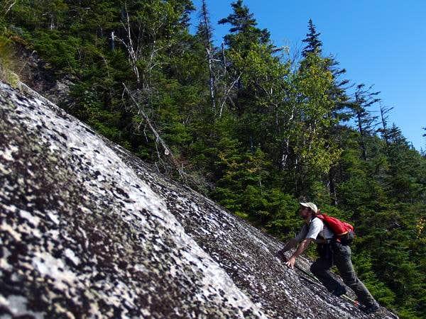 Whiteface Ski Slide 4 Midsection (MudRat)