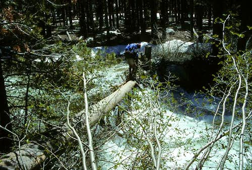 Crossing Mono Creek