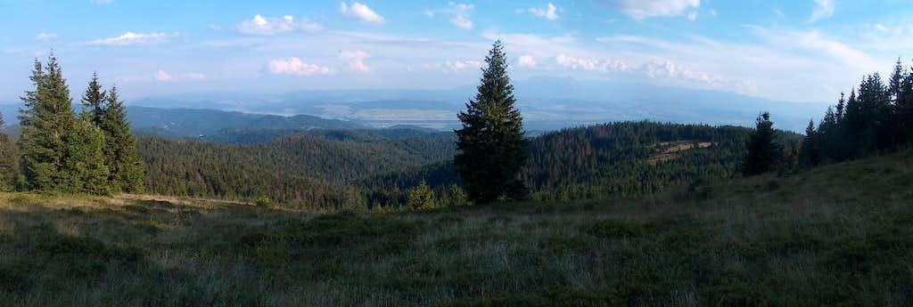 View to Tatras from Kiczora, Gorce
