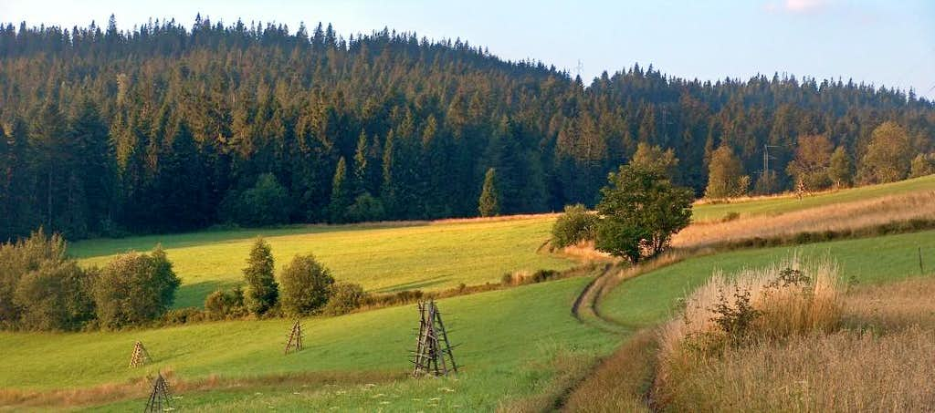 Swinska Gora, Gorce