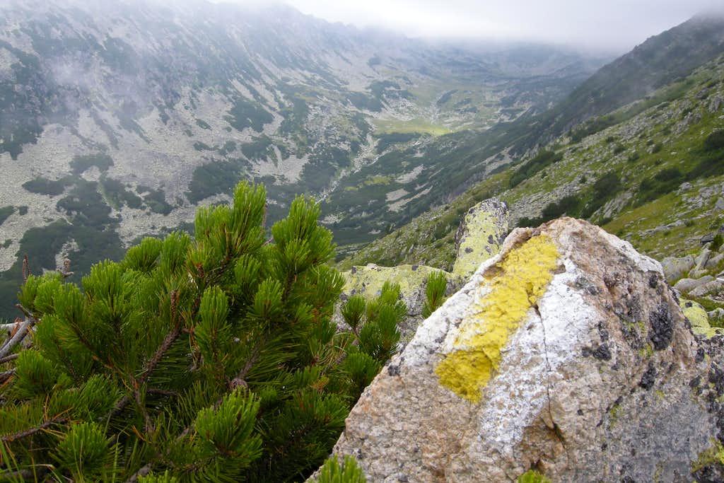 Stanisoarei valley