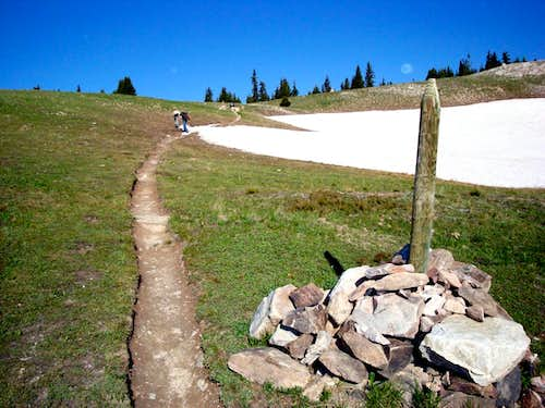 A post that marks the trail