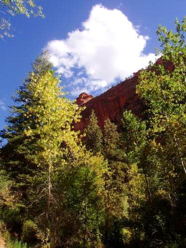 Kolob Canyon Beauty