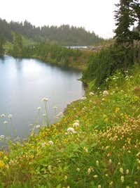 Twin Lakes with flowers