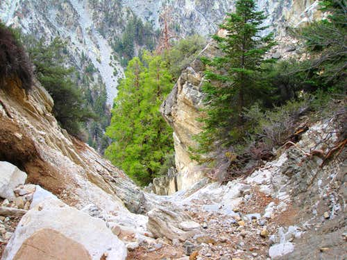 Looking down Vivian Creek to 125\' Drop