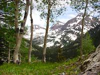 Yule Creek Trail