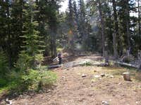 Koppen Ridge trail junciton.