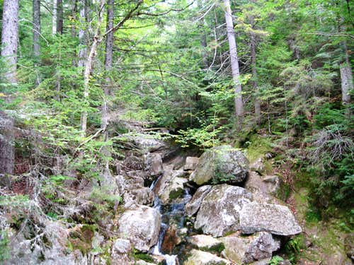 Ascending Crawford Notch