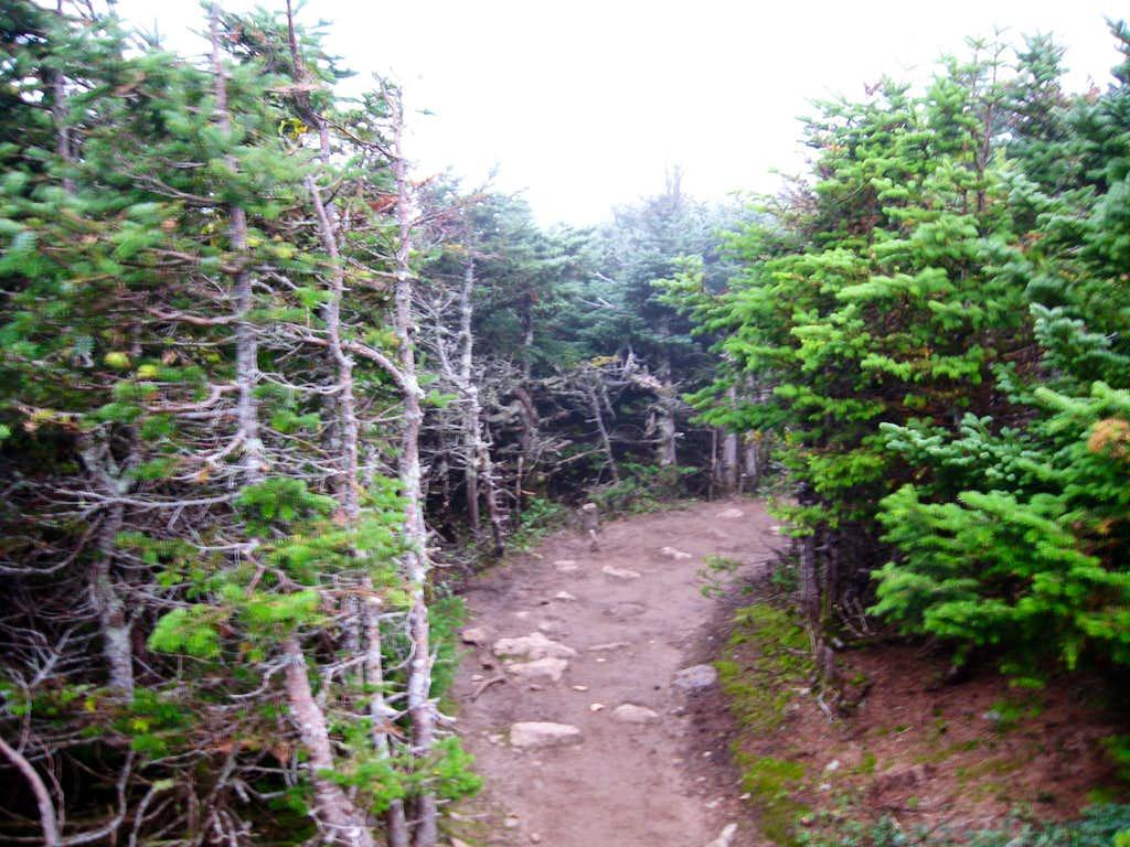 Descending Mount Pierce