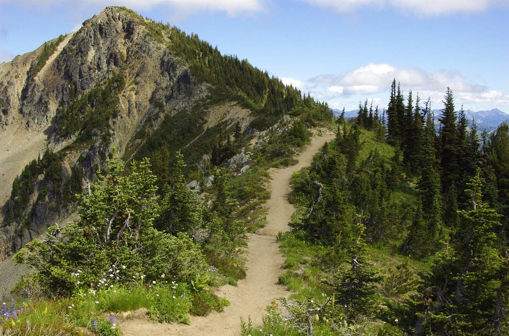 Trail to Dege Peak