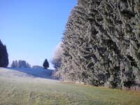 Early winter ambiance in the Allgäu