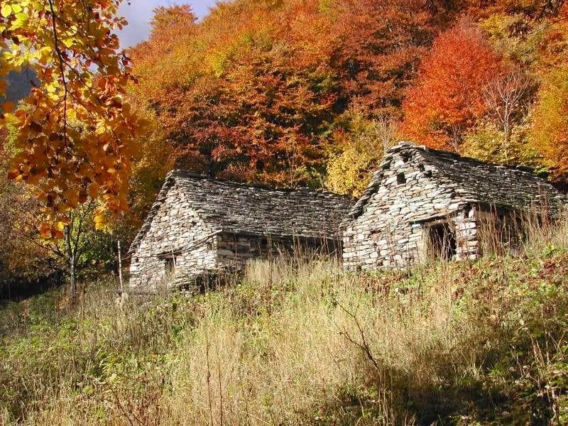 Autumn in Valgrande... (Alpe Burchi)