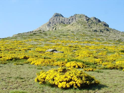 Riscos de Los Claveles y Los Pájaros (Peñalara - Sistema Central - Spain)