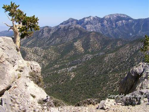 View of Mummy Mountain