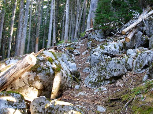 Boulder Outcropping On Deception Lakes Trail