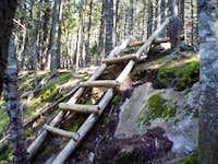 A mid-trail ladder