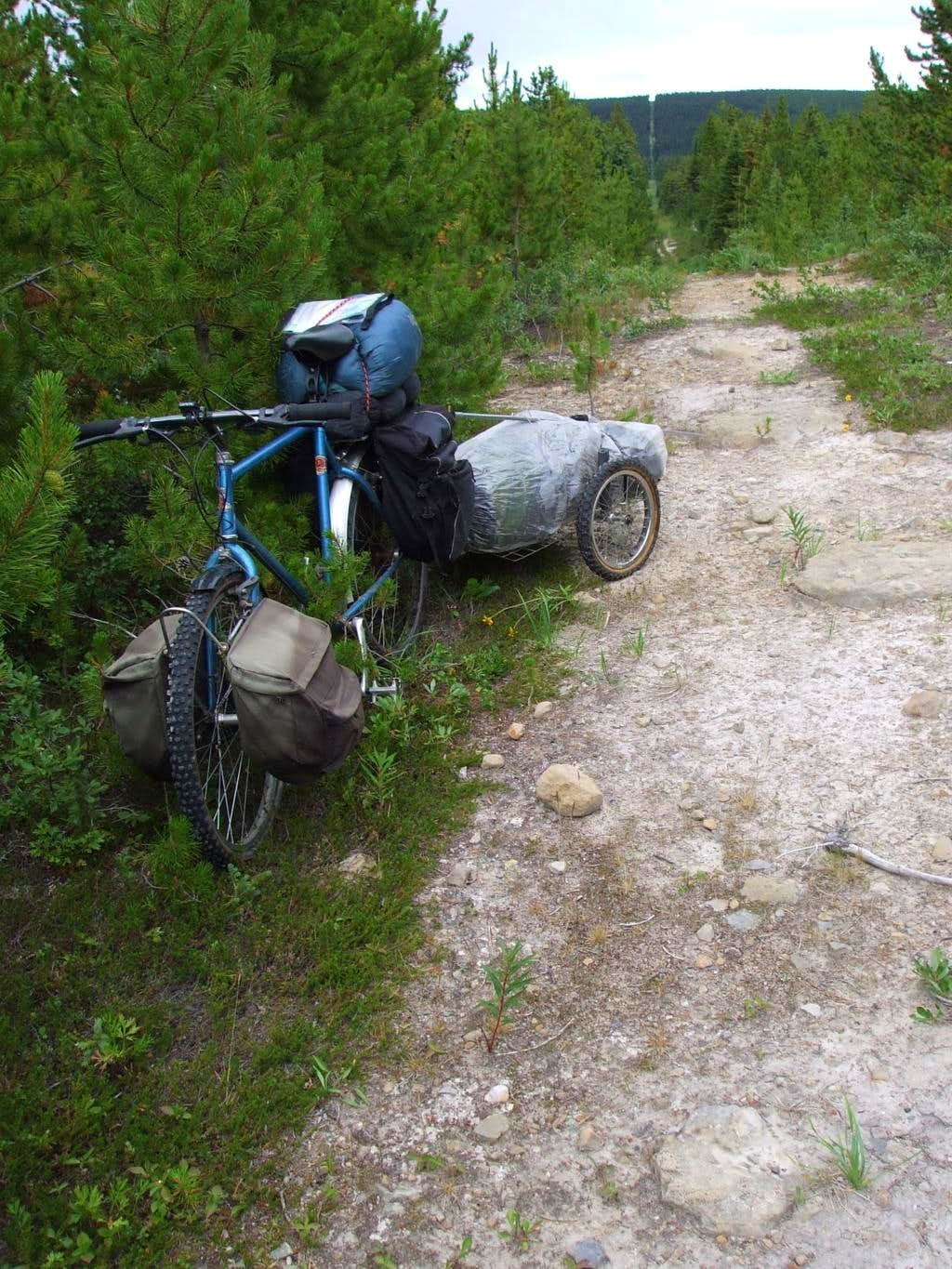 Bicycle and trailer on cutline