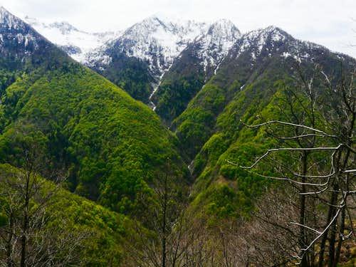 Ogliana Valley