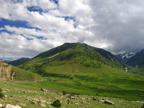 On way to Deosai
