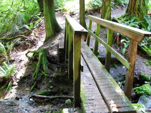 Wilderness Creek