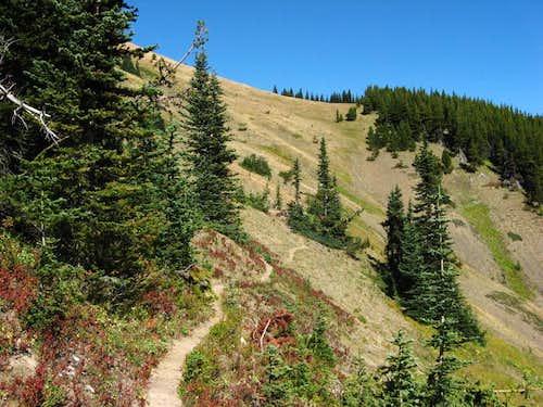 Maynard Burn Trail Terminus